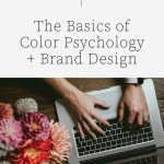 How Color Psychology Helps Create Your Brand Design | Witt and Company
