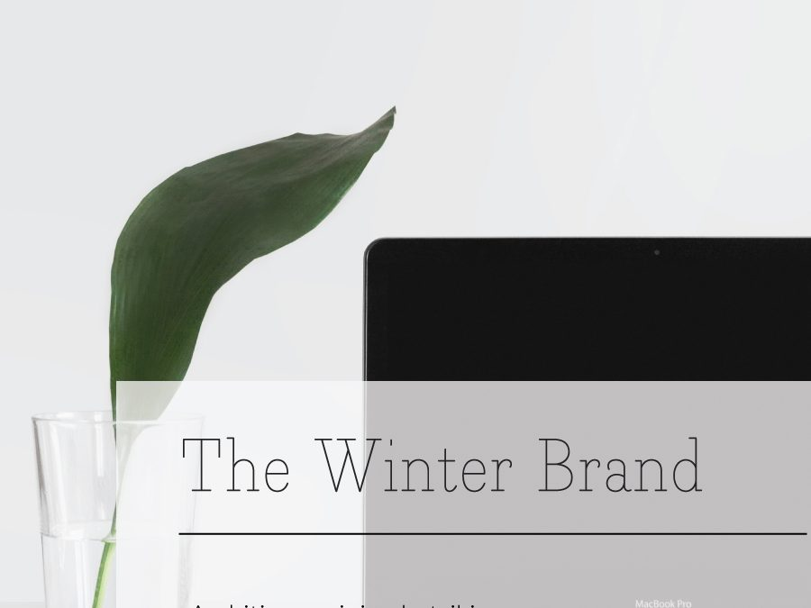 The Winter Season | Seasonal Color Theory