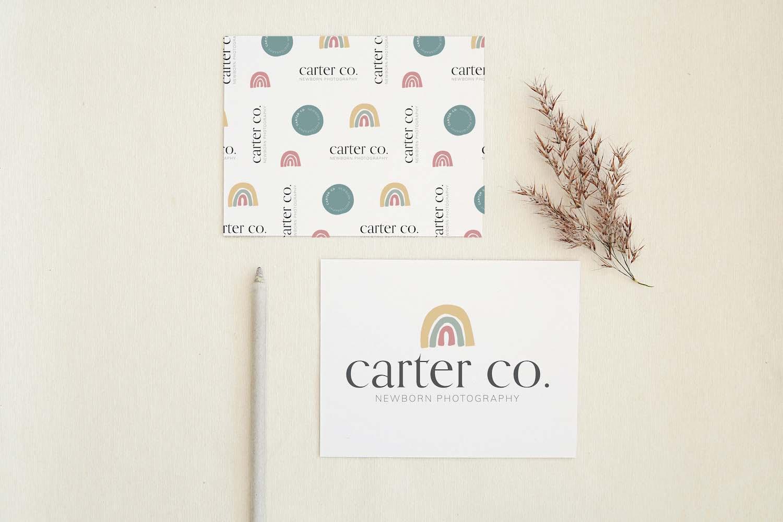 Carter Co Newborn Photography Semi-Custom Brand Design | Witt and Company